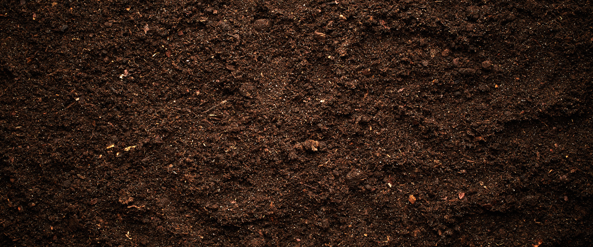 ผลการค้นหารูปภาพสำหรับ soil